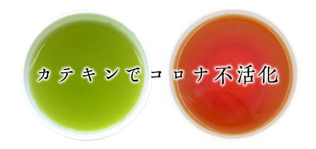 コロナ ウイルス 緑茶