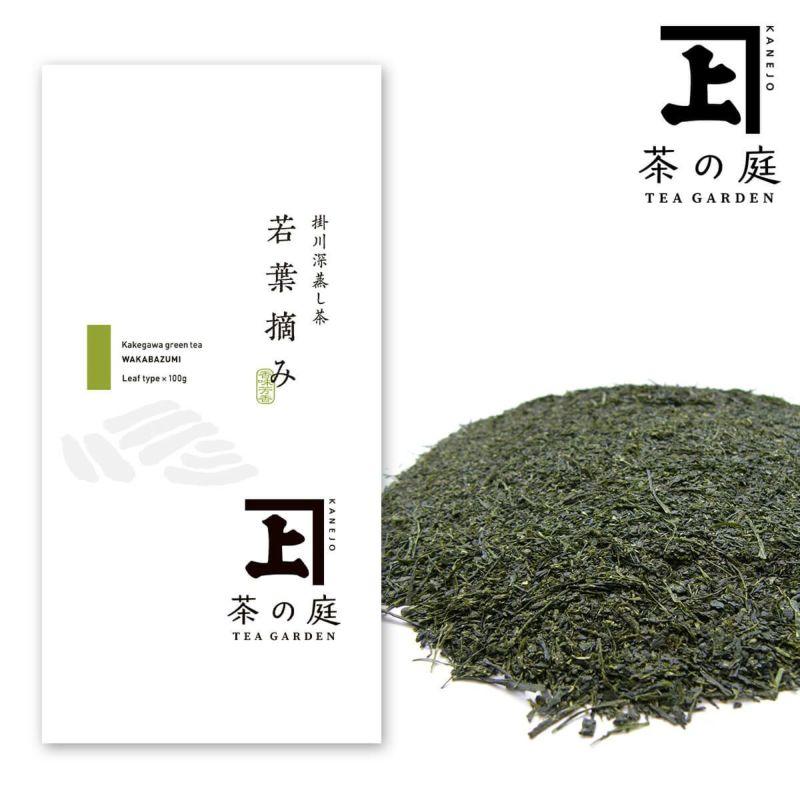 かねじょう 茶の庭 静岡・掛川茶 若葉摘み